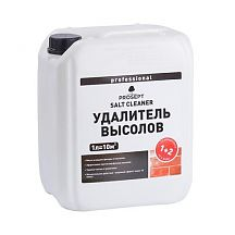 Удалитель высолов PROSEPT SALT CLEANER 5 л 021-5